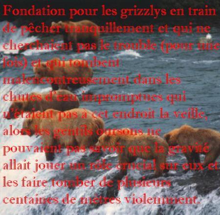 fondation des grizzly